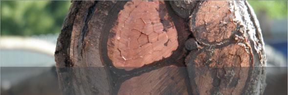Výkup barevných kovů a železa